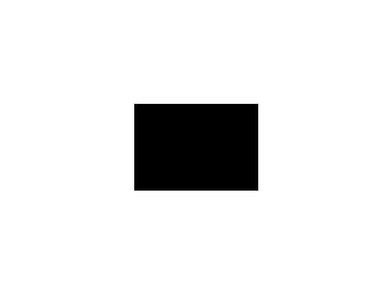 SURICATE – Фильмы против Жизни 2